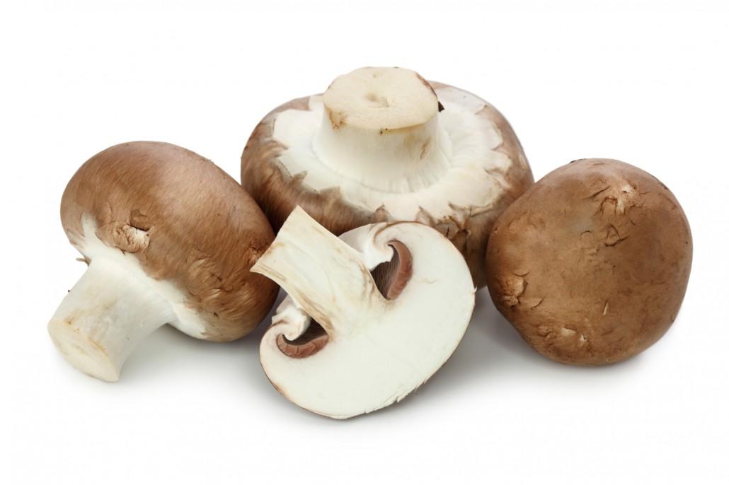 Egger Gemüsebau | Pilze