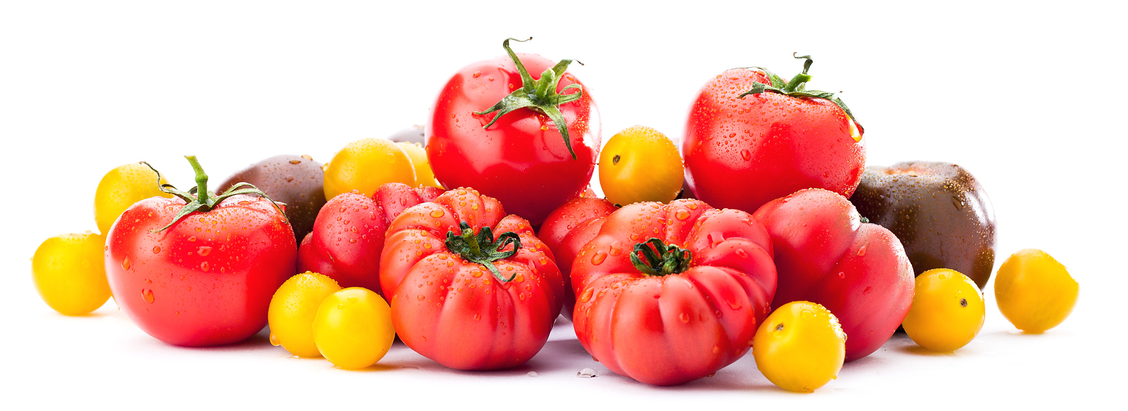 Tomaten Sorten