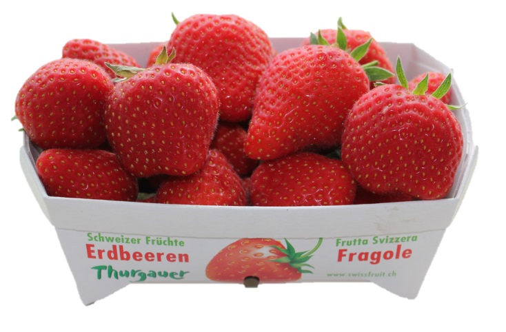 erdbeeren-250g-sga